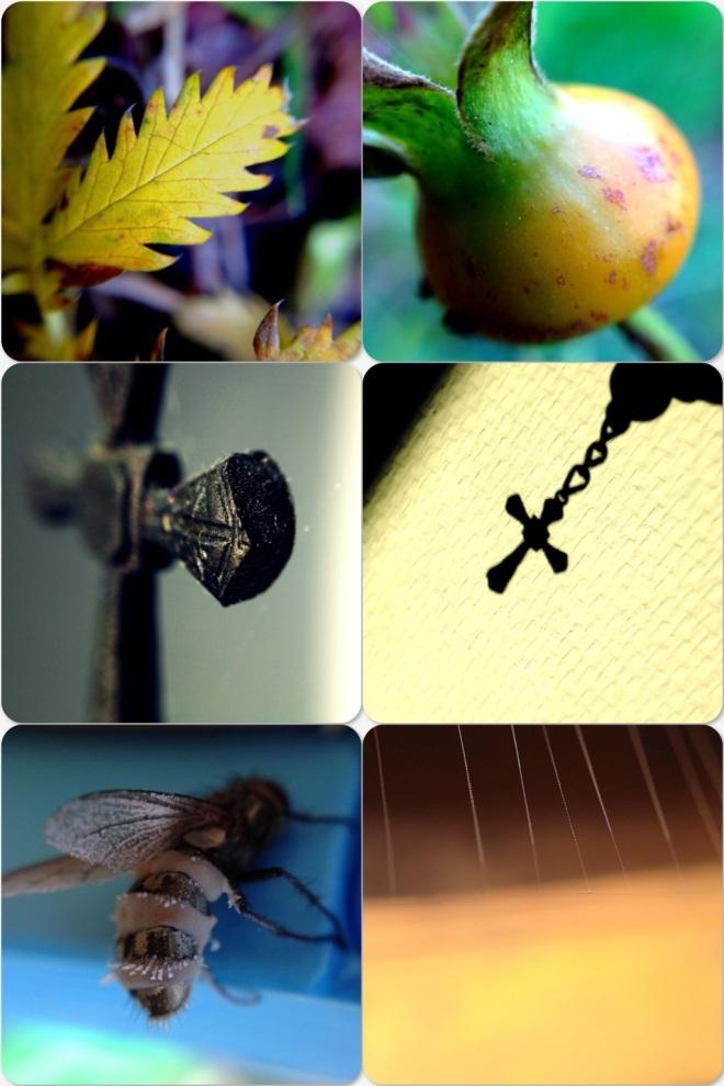 20121111-141029.jpg